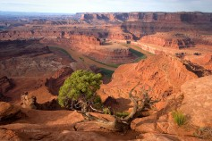 Dead Horse Point,