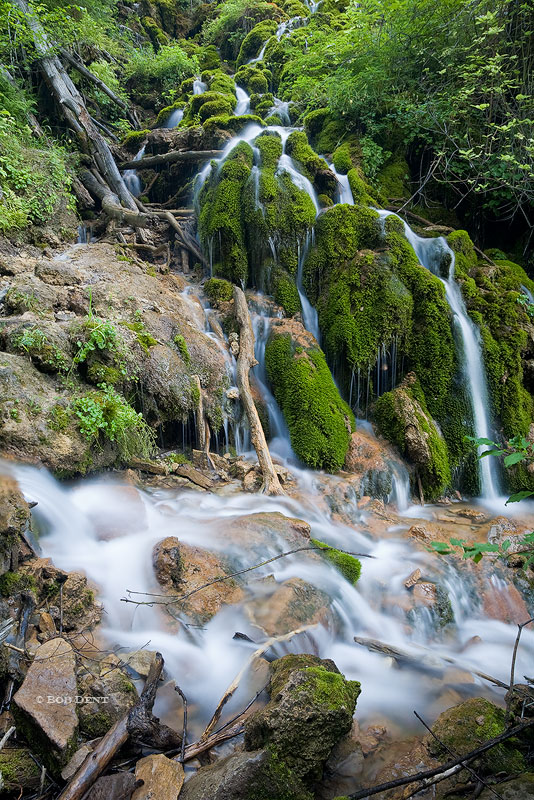 Dead Horse Creek, Hanging Lake, White River National Forest, cascade, Colorado, photo