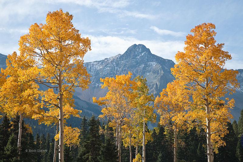 Mears Peak, autumn, aspens, San Juans, Colorado, Box Factory Park, photo