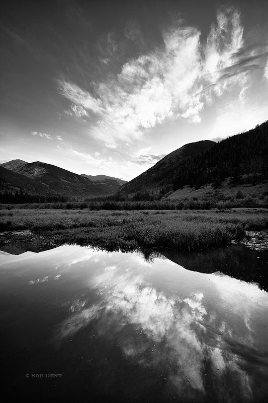 black and white,cottonwood,creek,san isabel national forest,colorado,reflection,clouds