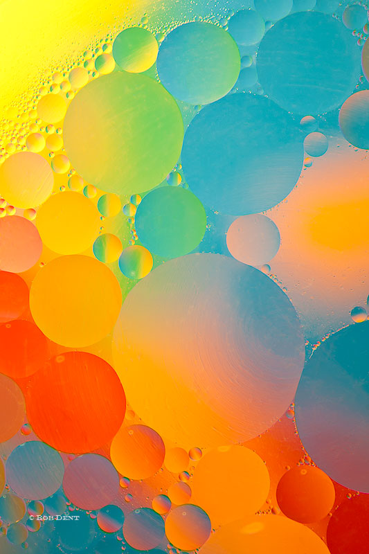 oil and water, bubbles, macro, rainbow, photo