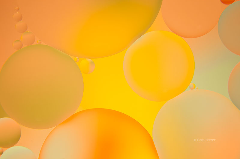 oil and water, bubbles, macro, photo
