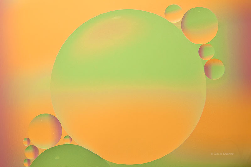 Oil And Water, slideshow, photo